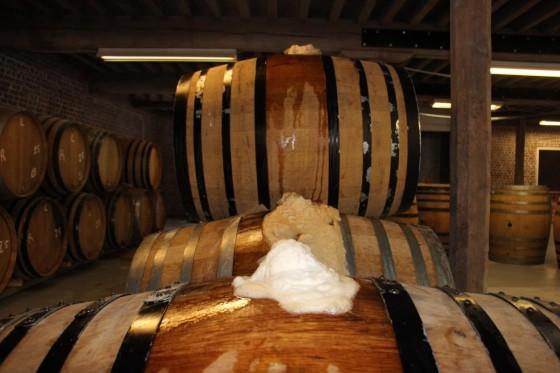 fermentation spontanée